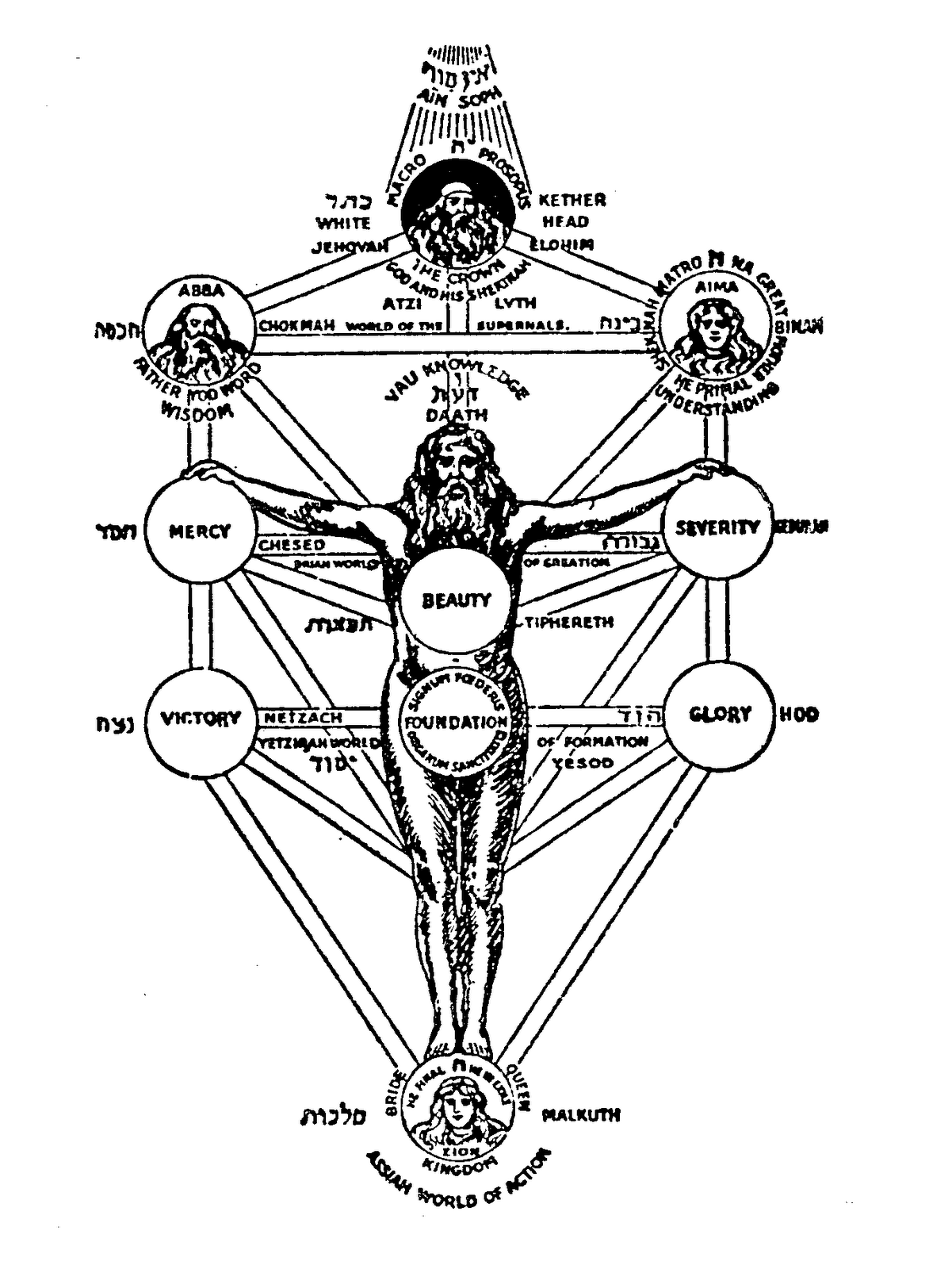 Tree Of Life Ars Magine An Imaginarium Of Illogical Vvvvv