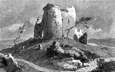 Žrnov-iz-XIX-veka-crtež-Feliksa-Kanica